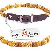 Baltic Secret Bernsteinkette Hund, Zeckenschutz Hunde, Bernsteinhalsband Hunde, Flöhe Hund, Zeckenschutz...