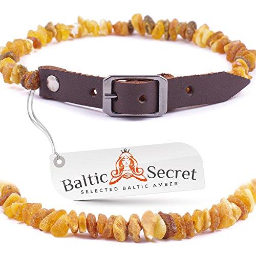 Baltic Secret Bernsteinkette Hund, Zeckenschutz Hunde, Bernsteinhalsband Hunde, Flöhe Hund, Zeckenschutz Katze
