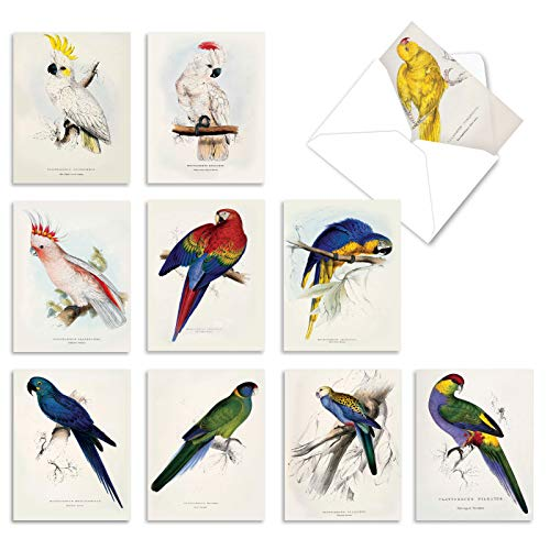 Boxed Set of 10 Elegant 'Birds of a Feather' Gratitude and Thank You Cards with Envelopes 4 x 5.12 inch, Gorgeous Bird Greeting Cards, Stationary Note Card Set for Bird Lovers M6057