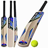 Just rider Popular Willow 20-20 Cricket Bat (Size Number 7 for Age Group Above 15 Years)