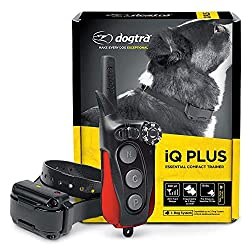 Dogtra IQ Remote Trainer- best dog shock collar