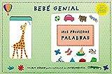 Bebé genial: Un Kit básico para estimular su inteligencia (Imaginarium Circulo - Libros (CAST))