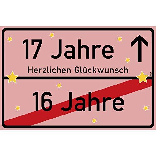 vanva 17 Jahre Party Deko Schild für den 17 Geburtstag Mädchen und Jungen Herzlichen Glückwunsch Spruch im Ortsschild Design Rosa