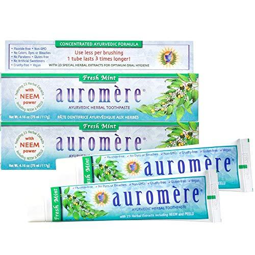 Auromere Ayurvedic Herbal Toothpaste, Fresh Mint -...