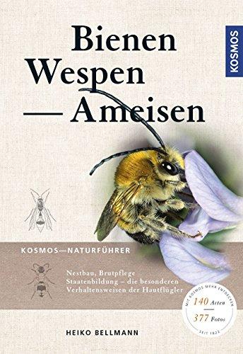 Bienen, Wespen, Ameisen: Staatenbildende Insekten Mitteleuropas