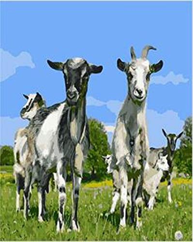 Yrhfys Diy Pintura Al Óleo De Diy Por Números Pintura Al Óleo Kit Adultos Niño Decoración Navideña Decoraciones Regalos Animal Gracioso Cabra-40x50cm(Sin marco)