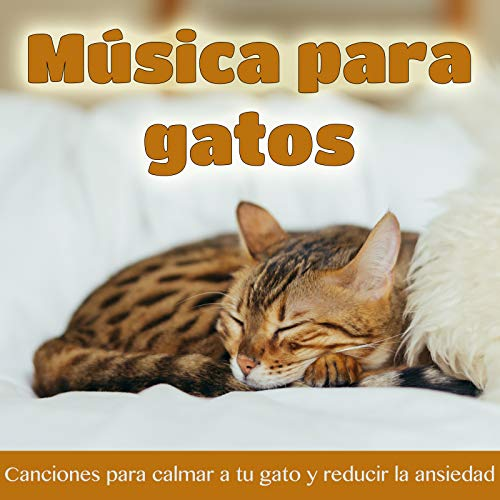 Sonidos Para Relajar a Tu Gatito