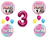 3rd Party Kittens Purrfect Birthday Balloons Decoration Supplies Cats Studio