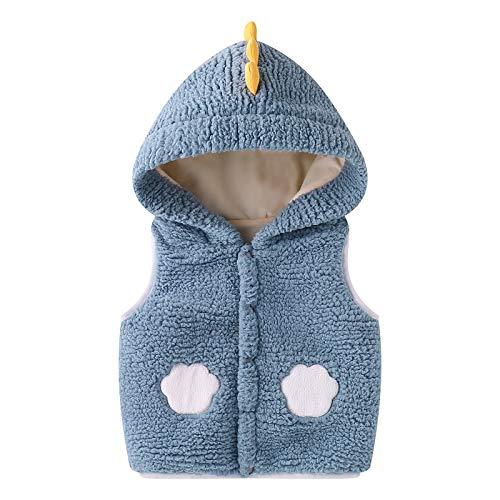 Bebé Chaleco con Capucha, Invierno Fleece Chaqueta Outfits Traje de Nieve Niñas Niños Sin Mangas Calentar Abrigo Regalos Ropa 2-3 años,Azul