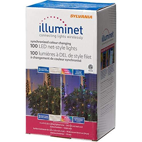 Led Mini Lghts Ww/Mlt100
