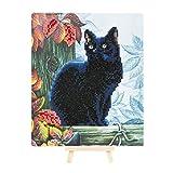 Craft Buddy 21cm x 25cm Ensemble de Cristal Art Gem avec chevalet en Bois (Black Cat)