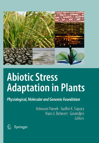 Abiotic Stress Adaptation in Plants: Physiological, Molecular and Genomic Foundation (English Edition)