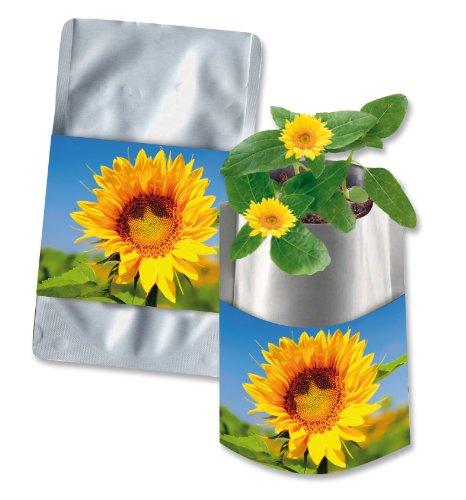Pflanztüte Plant Bag Zwergsonnenblume