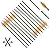 DZGN Flechas de Ballesta de Carbono de 15 Pulgadas Archites de la Caza de la Caza de Tiro a Las Flechas con 2'paletas reemplazadas de Punta de Flecha para la Caza de Tiro de Ballesta,36 pcs