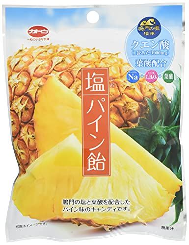 加藤製菓 塩パイン飴 70g ×10袋