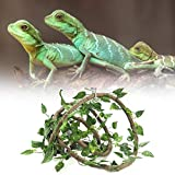 Artificial bendable vine with suction cups to make your pet feel at home and exercise while climbing about in his own jungle gym. Perfect for fish tank, reptile box and aquarium decoration and landscaping Made of premium PU, eco-friendly, non-toxic, ...