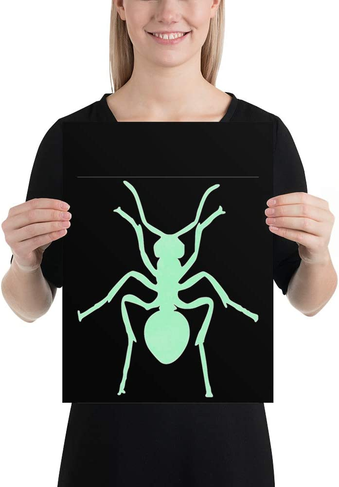 Ant Cash special price 86 Poster Super sale period limited