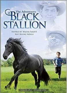 ADVENTURES OF THE BLACK STALLION: SEASON ONE 1