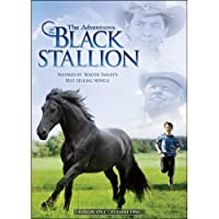 ADVENTURES OF THE BLACK STALLION: SEASON ONE 1