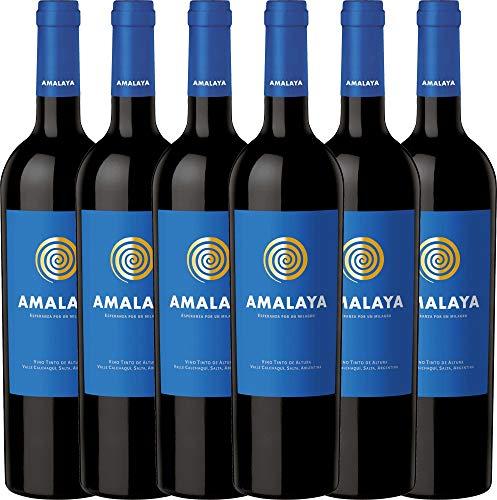 6er Weinpaket Rotwein - Amalaya Tinto 2018 - Bodega Colomé mit VINELLO.weinausgießer | trockener Rotwein | argentinischer Wein aus Salta | 6 x 0,75 Liter
