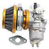 GOOFIT Carburatore Minimoto con Filtro Aria 44mm del Filtro Carburante Sostituzione per 2 Tempi 43cc...