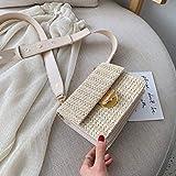 ACIL Mini bolsa cruzada de tejido para mujer, de verano, bolsos y bolsos de piel, color beige, 18,5 cm x 14,5 cm x 8 cm