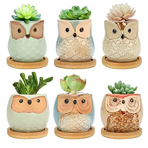 E-More Macetas suculentas de cerámica de búho de 6 cm, Paquete de 6 macetas de Flores de búho con Bandeja de bambú, Maceta de Plantas de Cactus macetas de bonsái