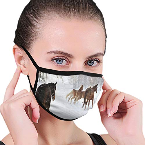 Comfortable Windproof mask,Horses In The Snow Playing Having Fun In The Forest Seasonal Animal Photography,Printed Facial decorations for Women and Men