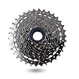 DRIFT MANIAC 9 Speed Freewheel 11-34 9spd Epoch E-bike Tornillo