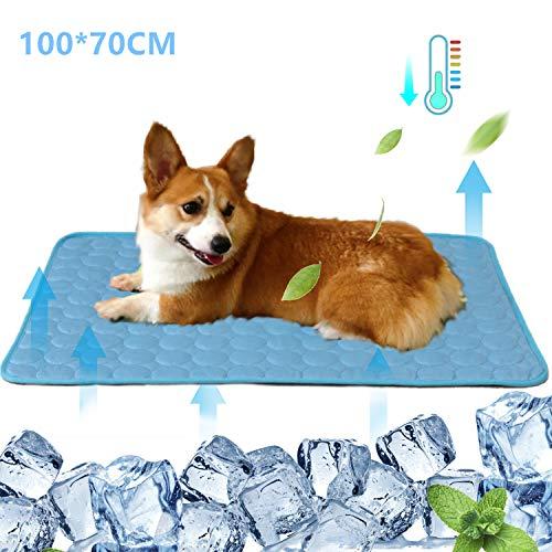 Hundekühlmatte Haustier Kühlkissen Katzen Eisseidenmatte Hundekühldecke Kissen für Zwinger/Sofa/Bett/Boden/Autositze Vermeiden Sie Überhitzung, ideal für Zuhause und Reisen 100 x 70cm