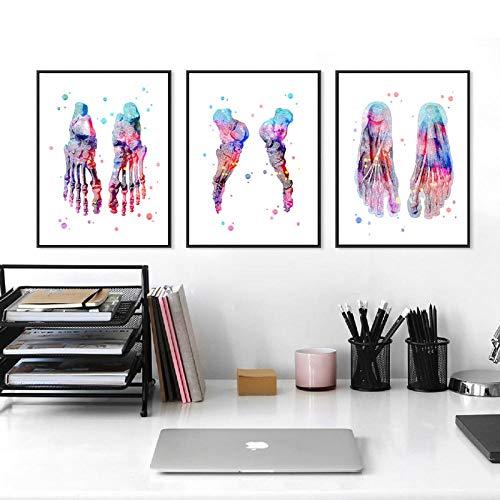 Conjunto de impresión de pies Esqueleto Acuarela Arte Lienzo Cartel Pintura Huesos de los pies Anatomía Medicina Impresión de Pared Clínica Oficina médica Decoración