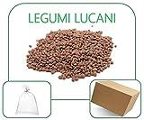 Lenticchie Rosse, Coltivate in Basilicata, Italia (5 Kg)...