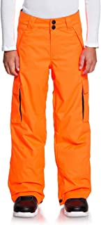 DC Banshee Snowboard Pants Kid's
