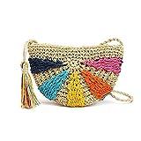 Eillybird Bolsa de Playa de Paja – Bolsa de Mano semircircular, Tejida a Crochet, Bolsa de Hombro para Vacaciones, Ocio, Turismo de Playa, artículos Esenciales de Moda