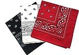 Pack 3 Pañuelos Bandanas de Paisley de Algodón para Cuello Pulsera Cabeza Unisex (negro+blanco+rojo, Talla única)