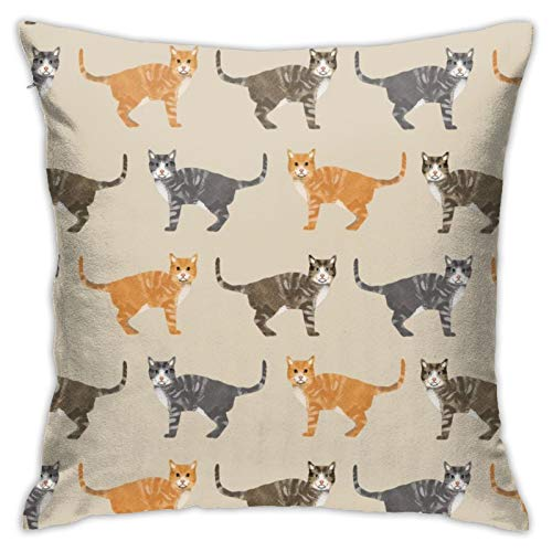 87569dwdsdwd Cats Tabby Cat for Cat Lovers Tan Square Pillow Case Home Sofa Decorative 18' X 18'Inch Ultra Soft Comfortable