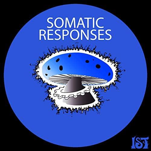 Somatic Responses