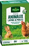 Vilmorin 4461312 Prairie Animaux Lapins et...