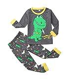 Topgrowth - Pijama de dinosaurio para niño, camiseta de manga larga para niña, sudadera + pantalones con impresión de cómic para niña, pijamas, dos piezas gris 100 cm