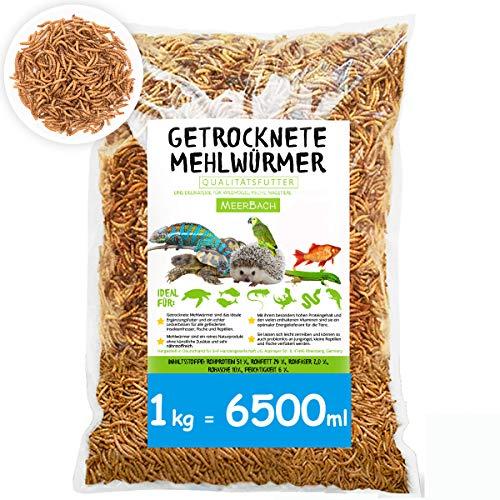 SHF-Natur Mehlwürmer getrocknet • 1kg (entspricht 6,5 Litern!) Futtermittel im Beutel • der proteinreiche Snack für Wildvögel, Fische, Reptilien, Schildkröten und Igel