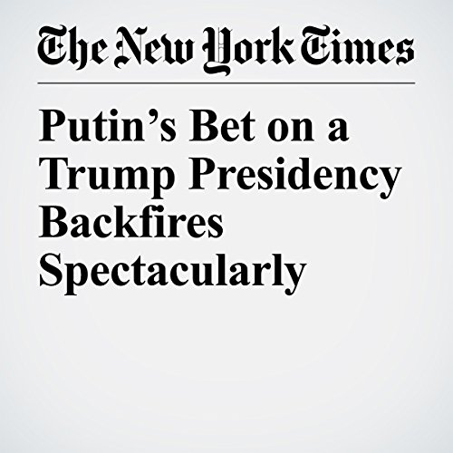 Putin's Bet on a Trump Presidency Backfires Spectacularly   David E. Sanger