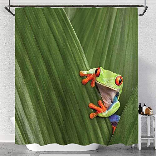 Duschvorhang Wasserdicht Rotäugiger Laubfrosch, der sich im exotischen Makroblatt in der tropischen Natur des Regenwaldes des Regenwaldes von Costa Rica versteckt mit Haken, waschbare Badvorhänge