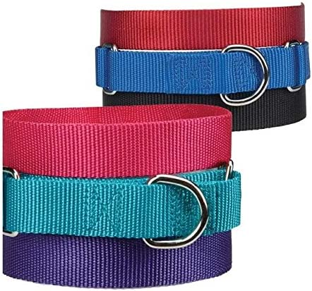 Guardian Gear Asst Color Bulk Shelter Los Angeles Mall Res Martingale Dog Collars 2021 autumn and winter new