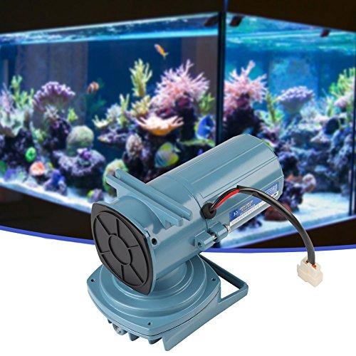 Elektrische Luftpumpe, DC 12V 35 Watt Luftpumpe Belüfter für Fischteich Aquakultur Aquarium Zubehör Werkzeug Luftkompressor Für Aquarium