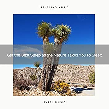 2020 Best: Get the Best Sleep as the Nature Takes You to Sleep