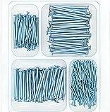 HongWay Hardware Nail Assortment Kit 250pcs, Galvanized Nails, 4 Size Assortment...
