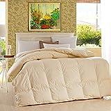 WENZHEN Bettdecke Daunen,Baumwolle Bettdecke, weiße Gänsedaunen Winter Dicke warme Decke, geeignet für Single Double-Beige_220 × 240 cm / 4,5 kg