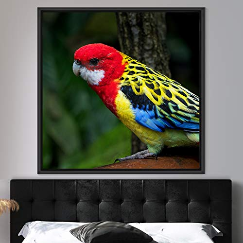 """bestdeal depot Bright Bird Framed Canvas Wall Art Prints for Living Room,Bedroom Framed Artwork Decoration Ready to Hang - 24""""x24"""" inches"""