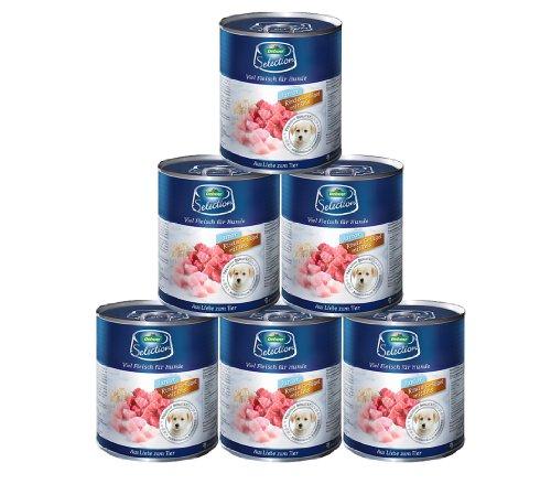 Dehner Comida para Perros Premium, para niños, Vaca, Aves de Corral y Patatas, 6 x 800 g (4,8 kg).