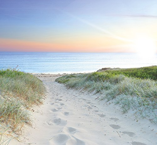 murimage Photo Wallpaper Sea Beach Sunset 274 x 254 cm Including Paste Wall Mural 3D sand bay travel nature sunrise gras livingroom bedroom